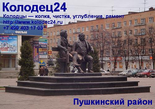 Пушкино Пушкинский район Московская область