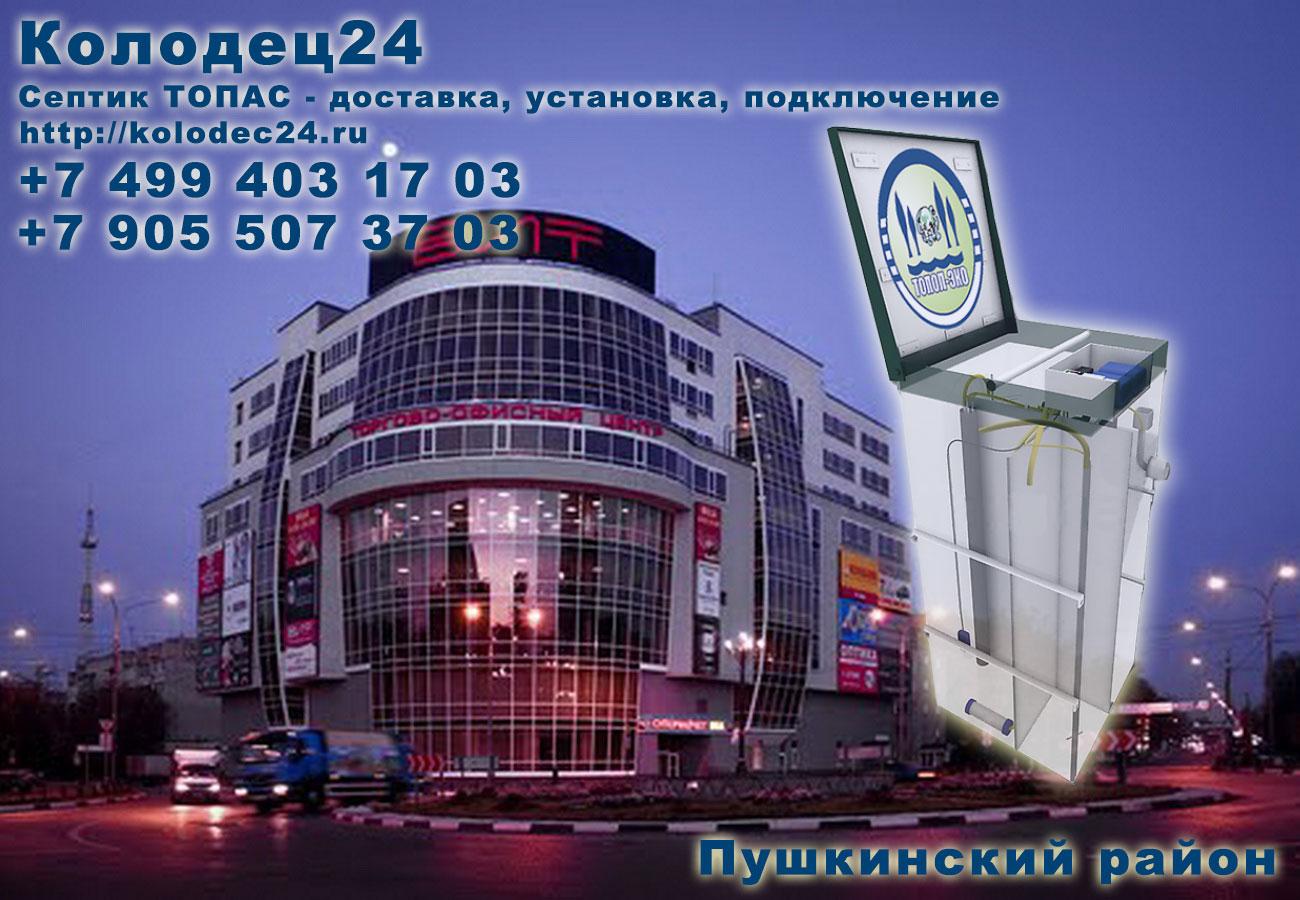 Доставка септик ТОПАС Пушкино Пушкинский район